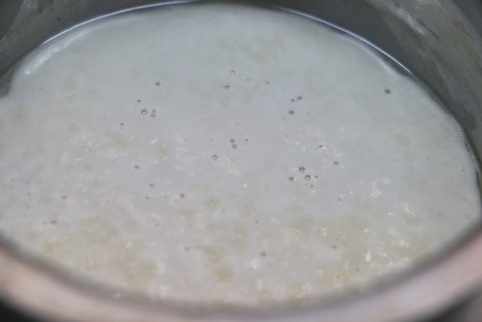 activated yeast for making butter naan recipe