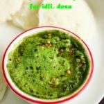 pudina chutney recipe for idli, dosa