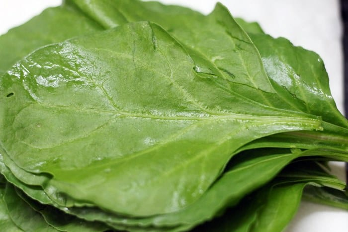 cleaned spinach eaves for palak pakoda recipe