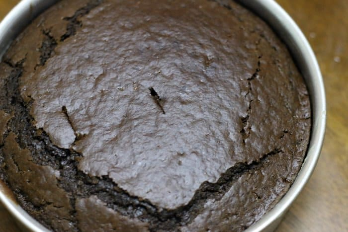Baked chocolate cake out of oven